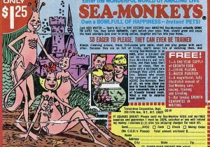 1970s comic book ad sea-monkeys